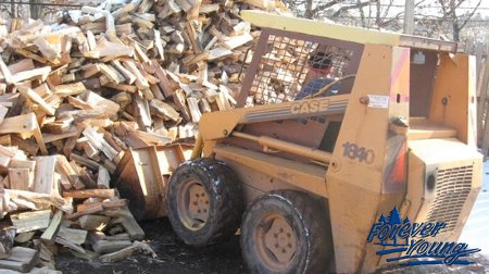 firewood-jpg-450x450