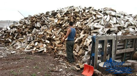 firewood1-jpg-450x450