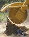 stump_grinding